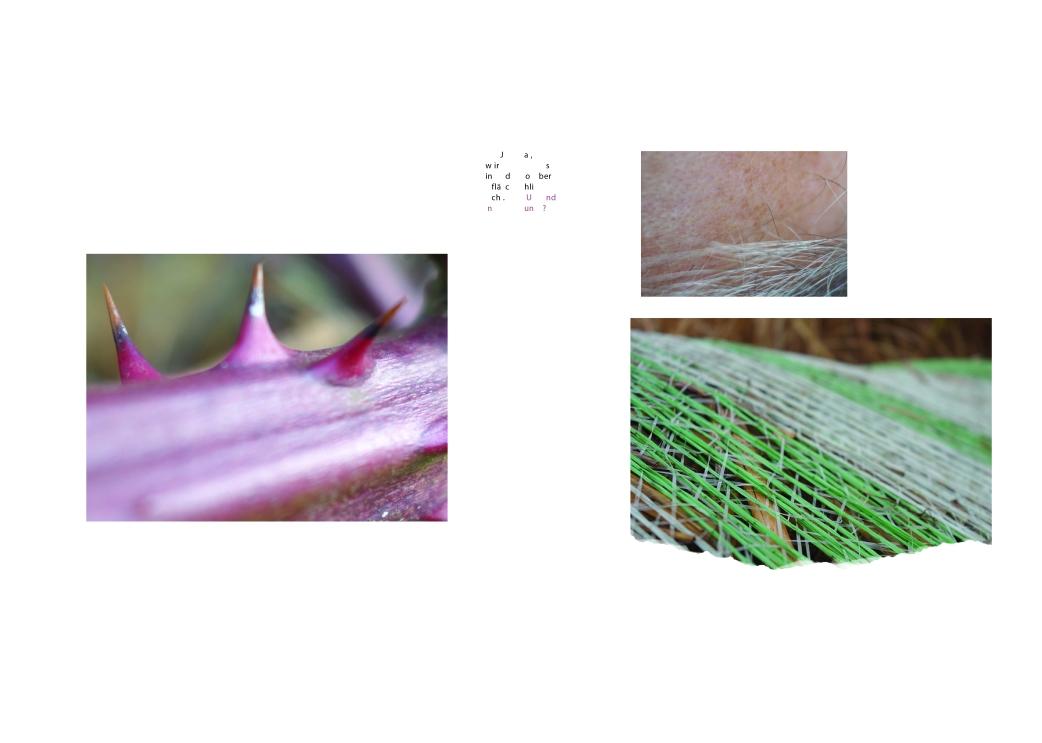 layout_1aufmacher3